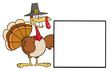 Turkey Cartoon Character Presenting A Blank Sign