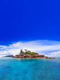 Fototapeta ocean - piasek - Plaża