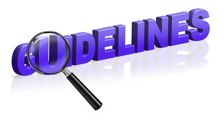 guidelines description instruction specification