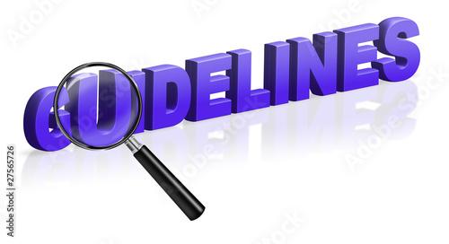 guidelines description instruction specification