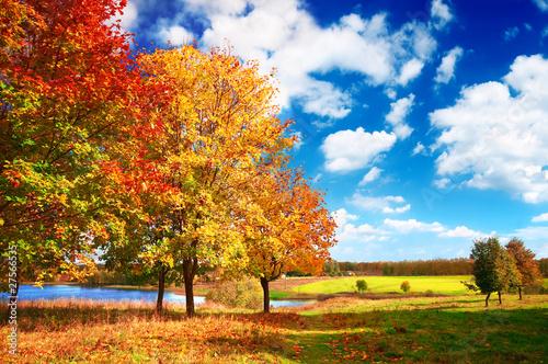 Jesienny krajobraz