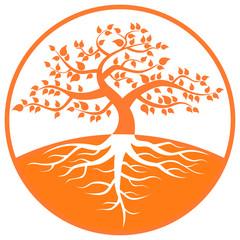 大樹 オレンジ