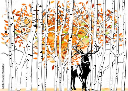 Obraz na Plexi Hirsch im Wald