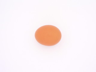 A brown egg on white 02