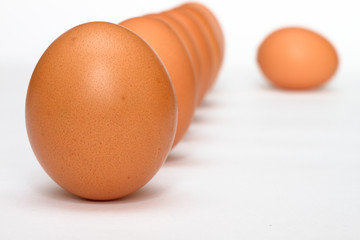Row of eggs and lonely egg
