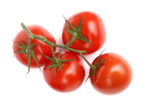Branch with mellow tomatoes isolated on white poster