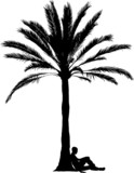 Palm tree with sitting man