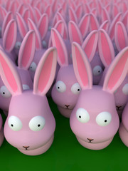 ウサギの群れ2