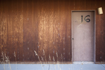 Apartment 16 door