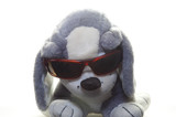 plush dog with glasses poster