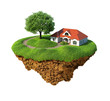 Little fine island / planet. Lawn with house and tree.