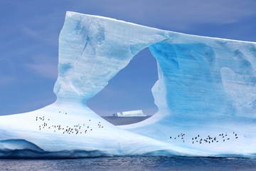 Eisberg mit Pinguinen - Iceberg w/ Penguins