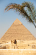 Giza Pyramid Entrance Sphinx Khafre Palm