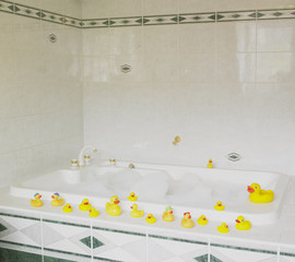 bath tub with rubber ducks
