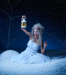 frozen fairy