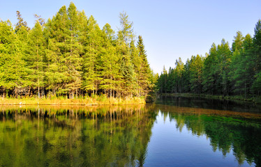 lake in a deep forest