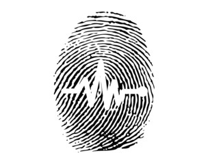 Fingerprint with electrical activity of the human heart