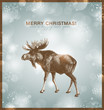bright winter background or card with moose