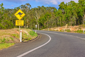 Kangaroo road warning sign