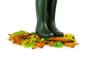 Rubber boots and leaves