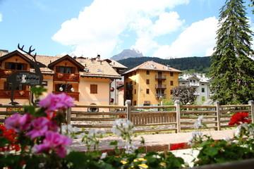 View of Moena town