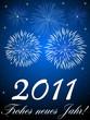 Frohes neues Jahr! - 2011