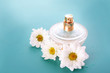 Bottle of perfume and chamomile on blue background