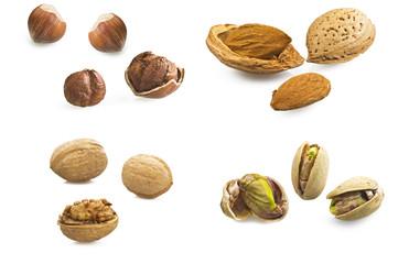 Frutta secca Collection