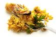 Paella ai frutti di mare - Cucina spagnola