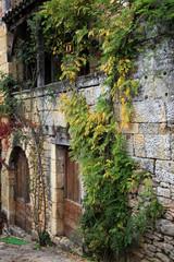 Sarlat, maison en pierre et glycine
