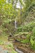 cascade en foret - 27744104