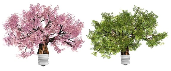 High resolution conceptual green trees as lamps isolated
