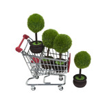 Shopping for Renewable Resources poster