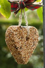 Herz aus Vogelfutter
