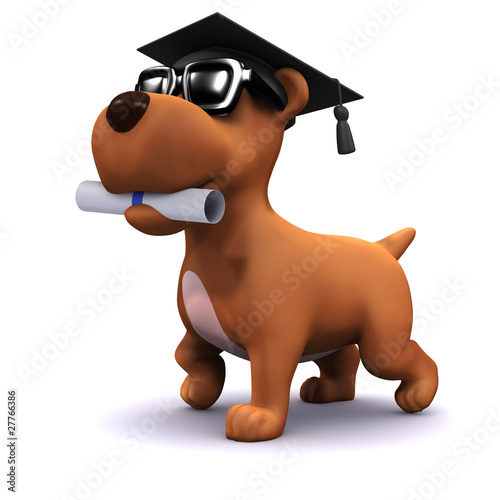 3d Small dog graduates from puppy school