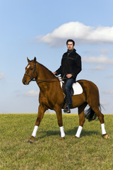 Novice Horse Rider