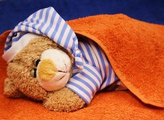 Teddy im orangen Bett