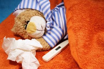 Bärchen schläft
