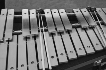 Percussion vibes with mallets in black and white