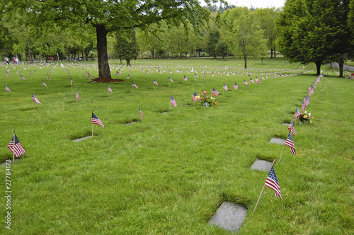 Flags decorate veterans graves on Memorial Day
