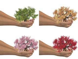 High resolution conceptual trees held in hands