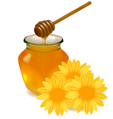 Honey with wood stick and flowers. Vector illustration.
