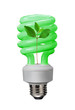 Green plant power fluoescent saves lots of energy.