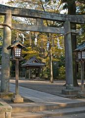 Torii, Gate of japanese shrine