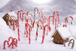 Christmas Ginger Bread Cottages in Candy Cane Forest