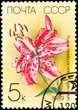 Soviet Russia Post Stamp Spotted Pink Lily Lilium Speciosum