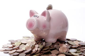 Sparschwein - sitzt auf dem Geld