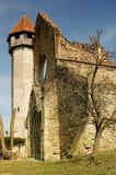 Old cistercian church in Carta, Transylvania, Romania poster