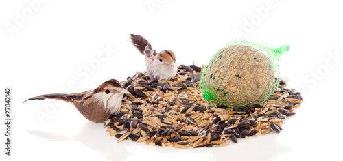 two birds eating winter birdseeds isolated on white background
