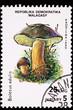 Madagascar Postage Stamp Porcini Mushroom, Boletus Edulis, Cep